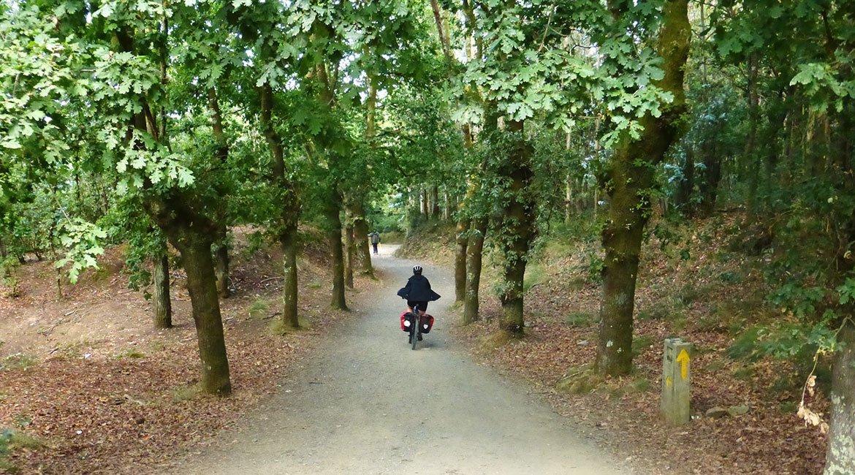 Camino de Santiago en bici Camino francés corredoira|BIKINGTHROUGHSPAIN