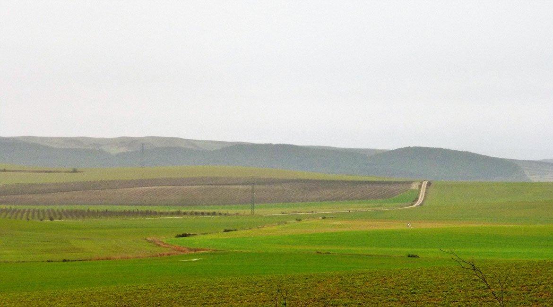 Camino de Santiago en bici Camino francés Rioja|BIKINGTHROUGHSPAIN