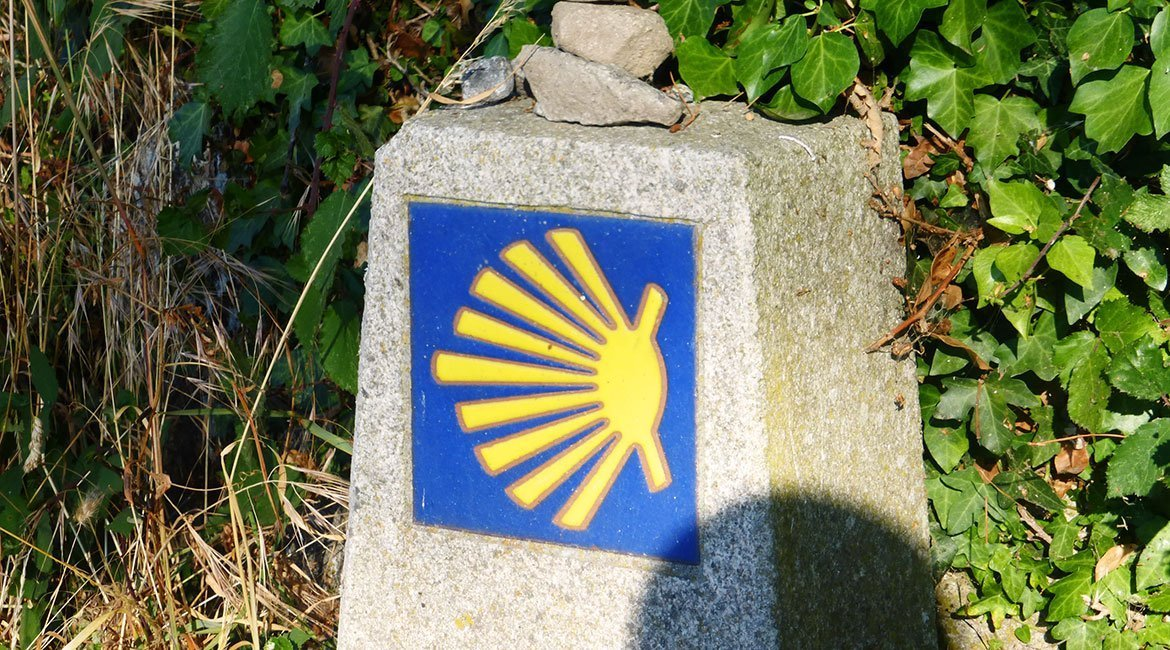 BikingThroughSpain_Camino_Santiago_Frances_7