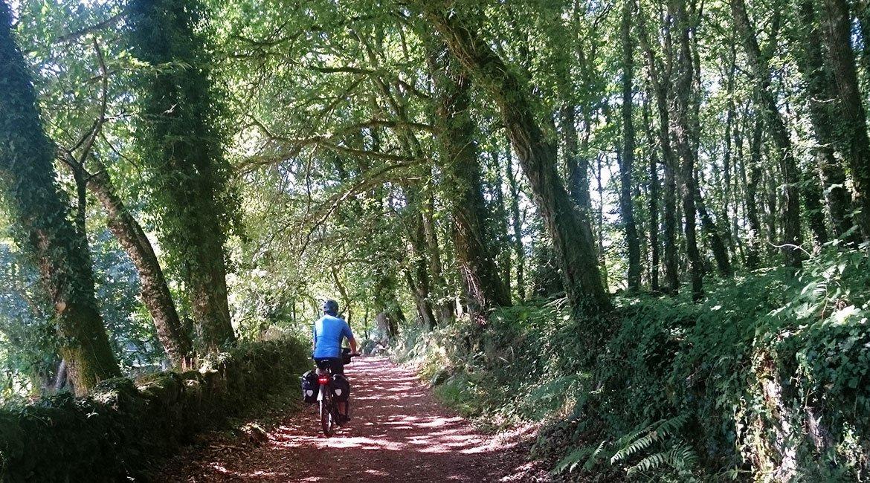 Camino de Santiago en bici Ruta Norte Pista | BIKINGTHROUGHSPAIN