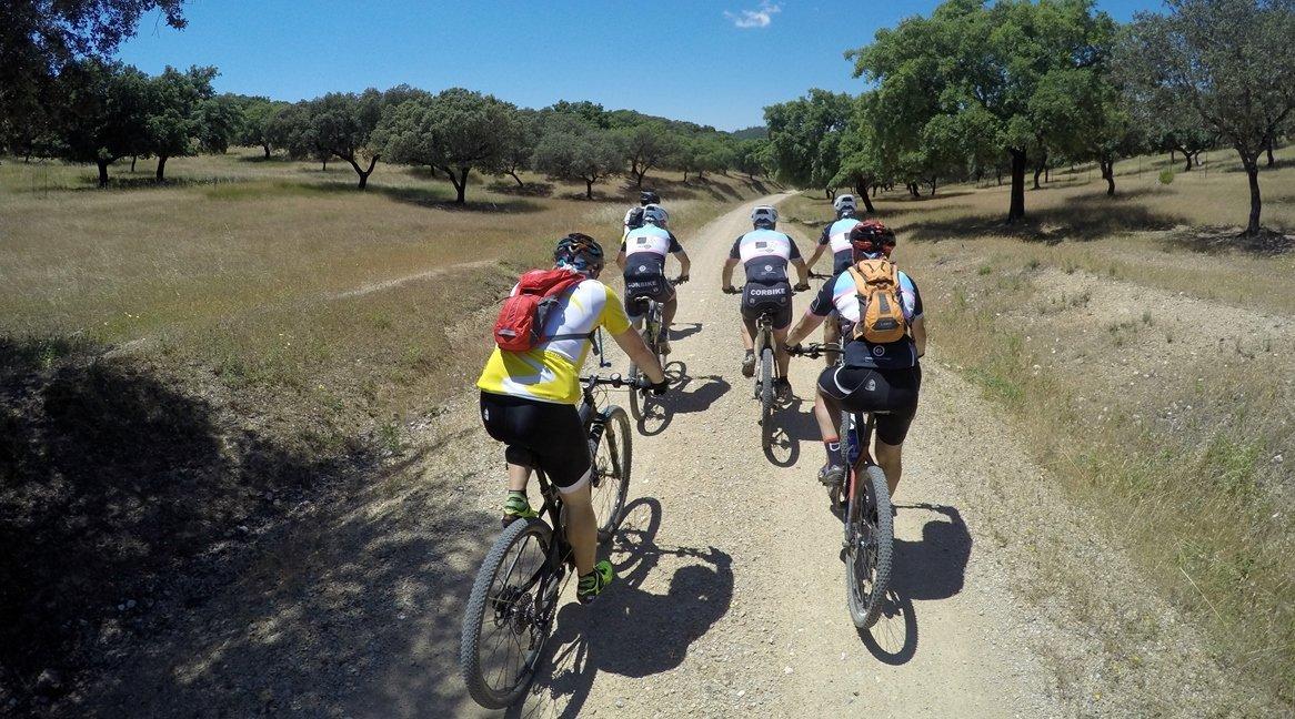 Camino de Santiago en Bici: Ruta la Plata Dehesa|BIKINGTHROUGHSPAIN