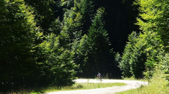 Bosque de Irati en bicicleta bosque | BIKING THROUGH SPAIN