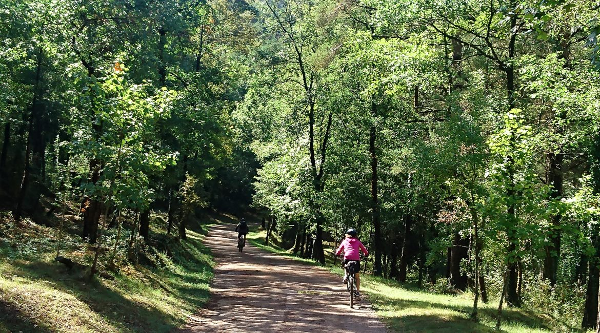 Ruta del Ter en bicicleta. Parc Natural Montesquieu 2| BIKING THROUGH SPAIN