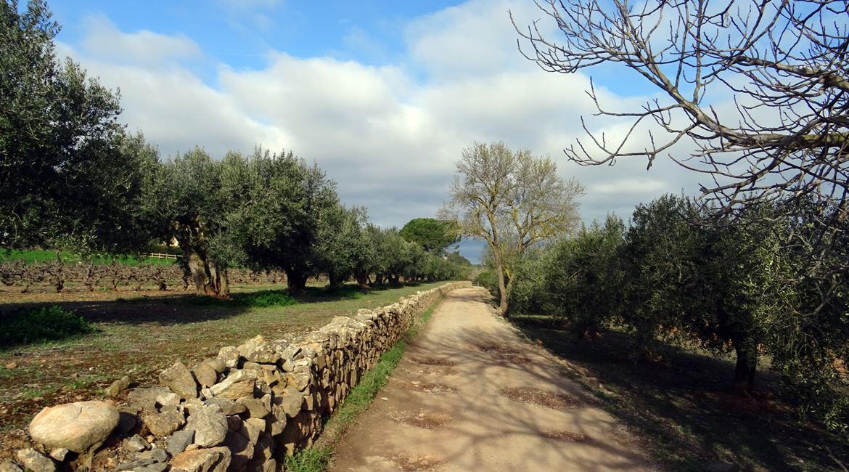 Ruta del Cister. Montblanc. BIKING THROUGH SPAIN