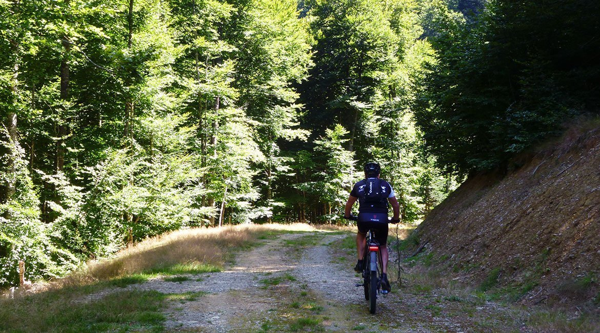 Bosque de Irati en BTT y cicloturismo hayas| BIKING THROUGH SPAIN