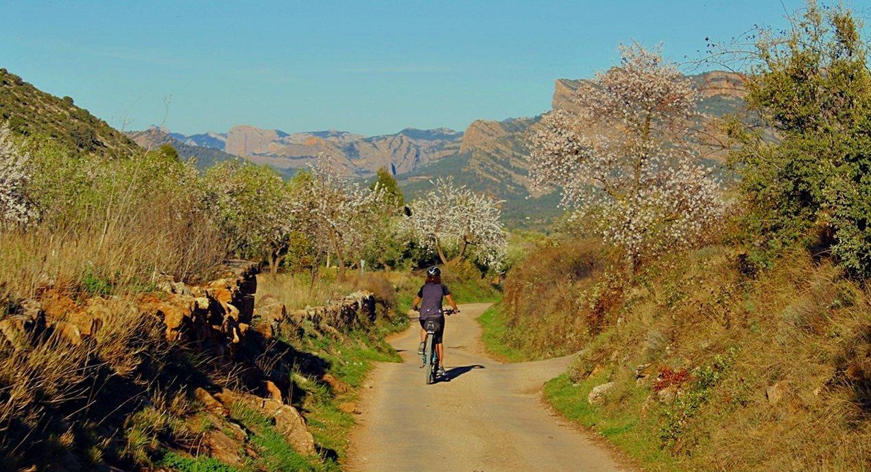 Vía Verde Val de Zafán en bicicleta. Els Ports. BICIS EN RUTA