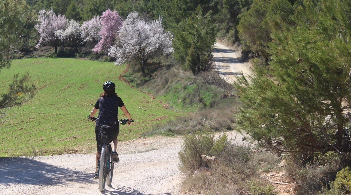 Matarranya y els Ports de Beseit en bicicleta PenaRoja|BIKING THROUGH SPAIN
