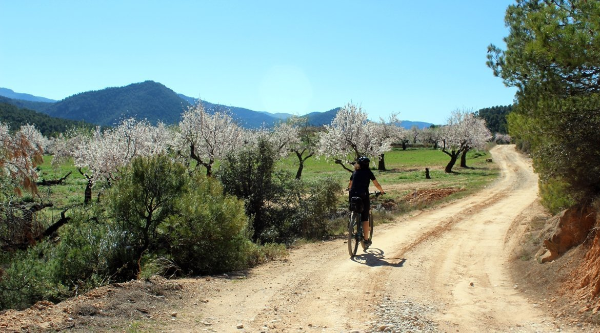 Matarranya y els Ports de Beseit en bicicleta Ametllers|BIKING THROUGH SPAIN