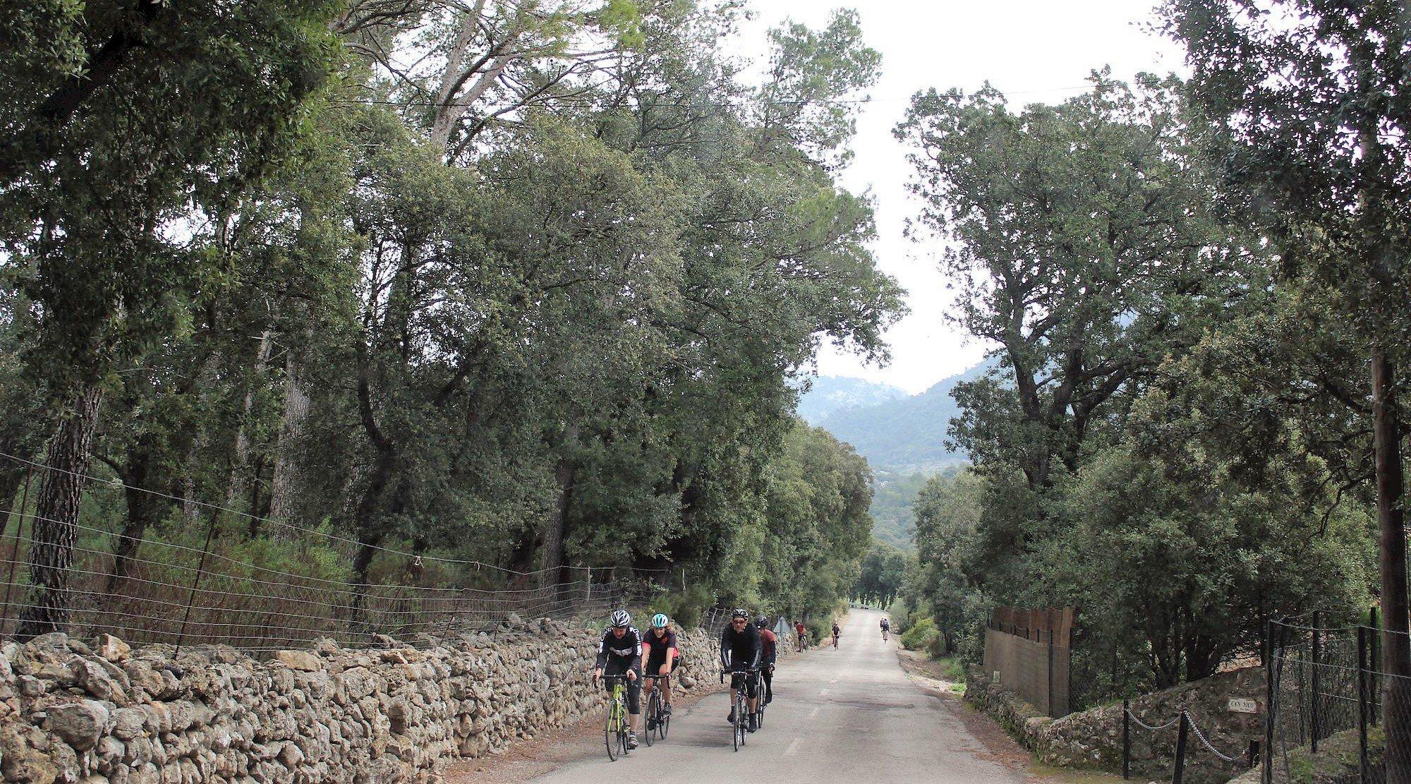 Serra de Tramuntana en bicicleta. Coll d'Honor 2. BICIS EN RUTA. 1170x650