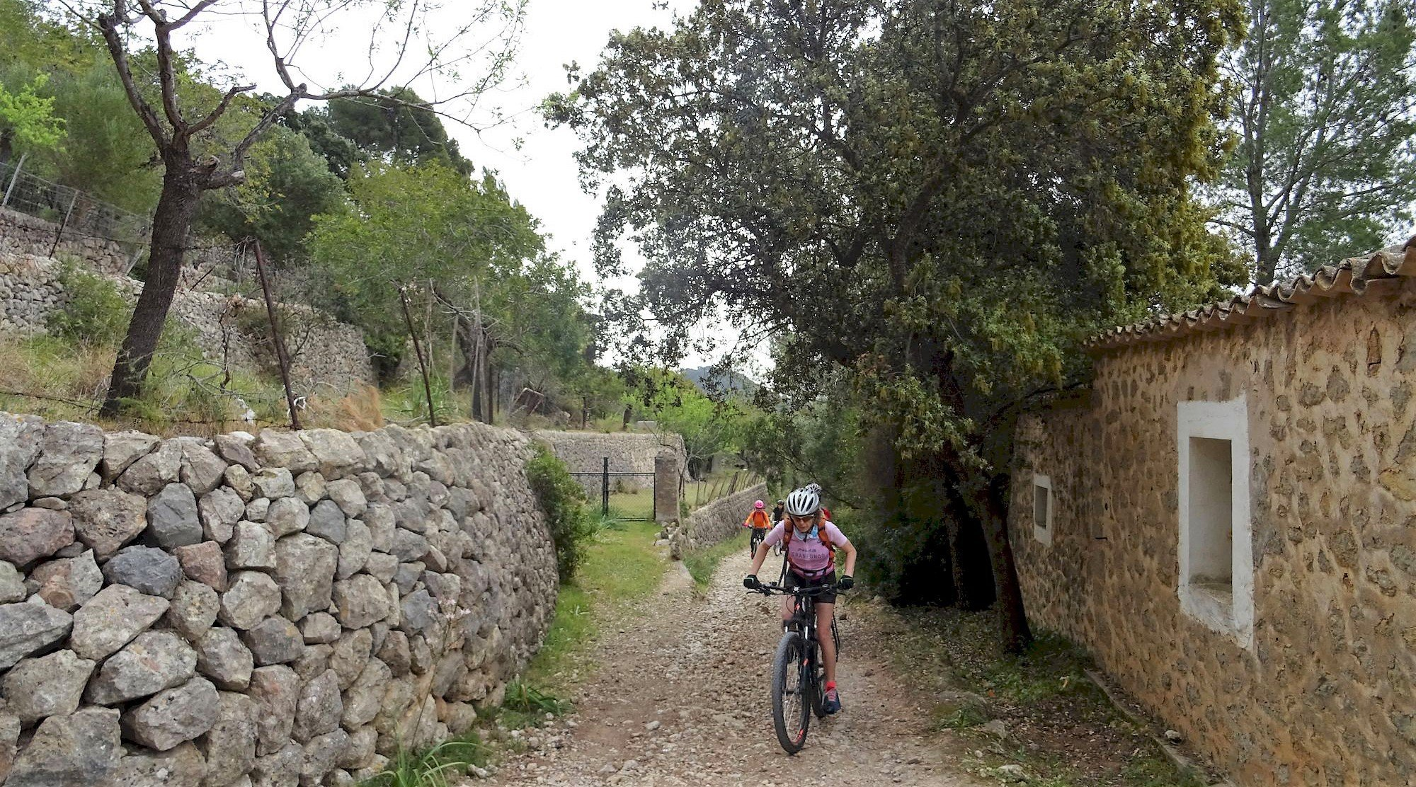 Serra de Tramuntana en bicicleta. Esporles. BICIS EN RUTA. 1170x650