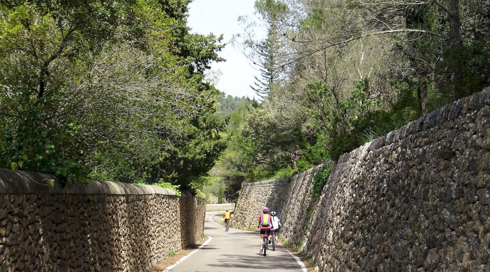 Serra de Tramuntana en bicicleta. Puigpunyent. BICIS EN RUTA. 1170x650