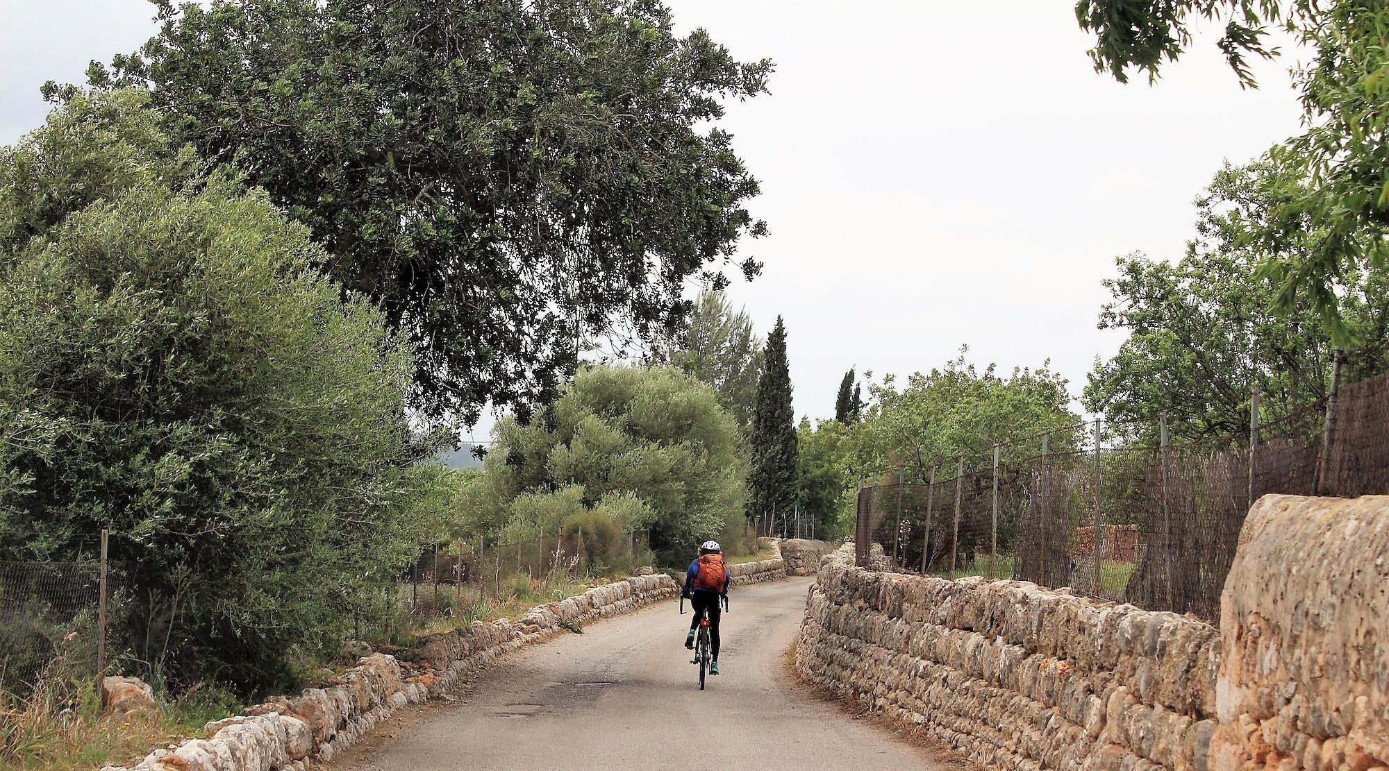 Serra de Tramuntana en bicicleta. Alaro 4. BICIS EN RUTA. 1170x650