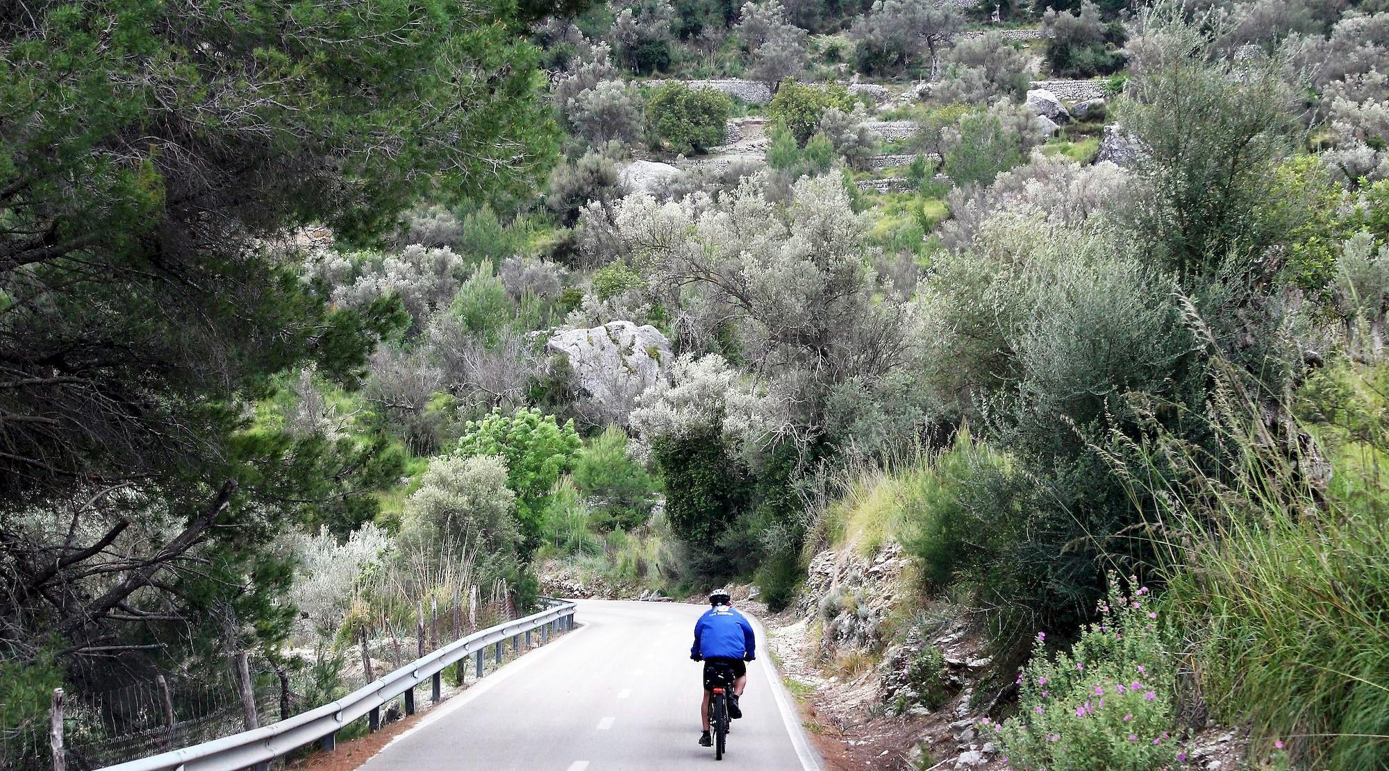Serra de Tramuntana en bicicleta. Alaro. BICIS EN RUTA. 1170x650