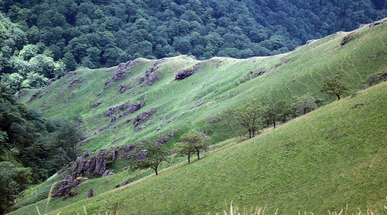 Valle de Esterencuby 2. PIRINEOS SOLITARIOS. BICIS EN RUTA. 1170X650