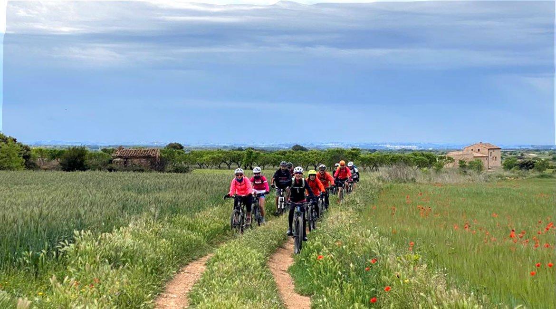 Ruta-del-Cister-Santes-Creus-camps-en-primavera-BICIS-EN-RUTA-1170x650